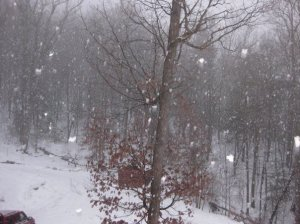 The view from my front porch many winters ago.